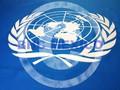 Bandera de la ONU en vinil textil