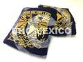 manteles presidium paño escudo UNAM