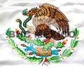 Escudo Nacional bordado en color en bandera de 90x158 cm.