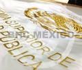 Escudo nacional bordado hilo metalico